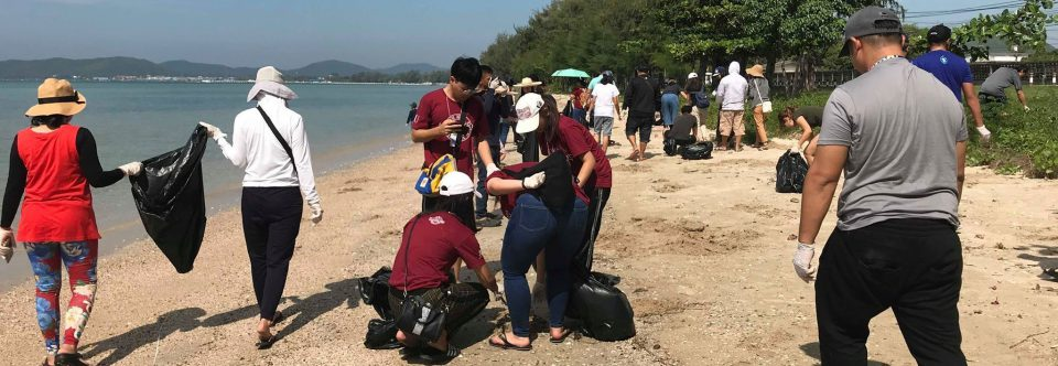 Sea Turtle home and beach cleanup